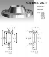 DN16 Forged Stainless Steel Welding Neck Flange