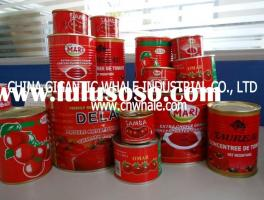 140g/tin double concentrated canned tomato paste with 28-30% BRIX
