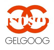 Henan Gelgoog Machinery Co., Ltd