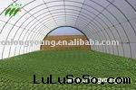 LY1032T Tunnel  Greenhouse