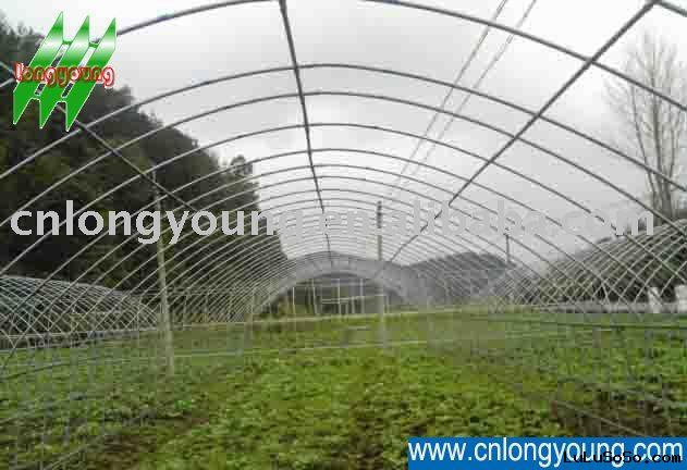 Vegetable Tunnel Greenhouse