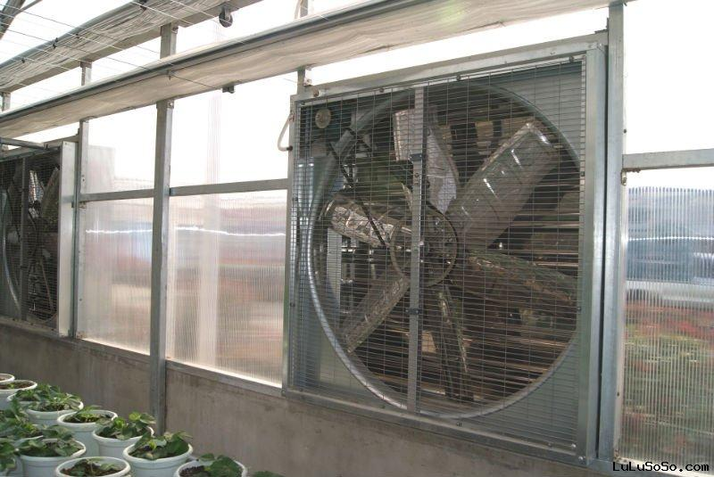 greenhouse construction exhaust fan