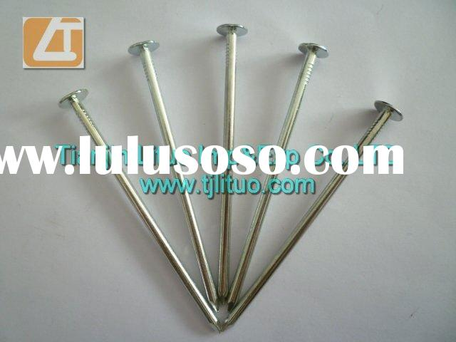 Galvanized common wire nail