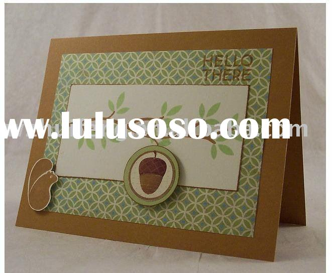2011 new greeting card template   hfpd00206