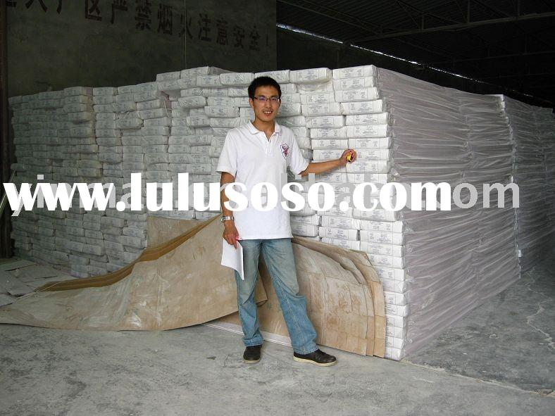 Plastic Building Materials for Wall and Ceiling Panels