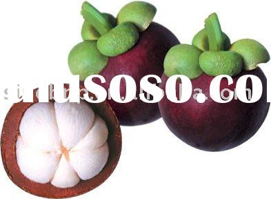 Mangosteen Extract Juice Powder