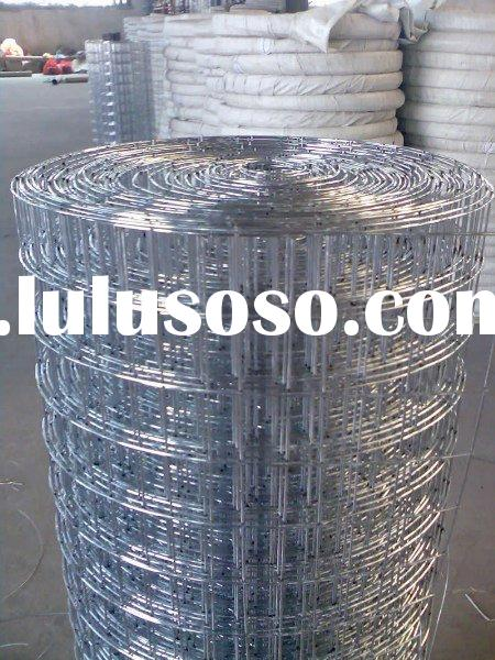 304,304L,316,316L Stainless steel welded wire mesh