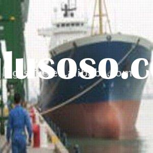 Freight forwarder ocean container freight sea freight cargo shipping logistics service- Leo