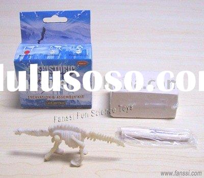 Dinosaur skeleton excavation kit toy