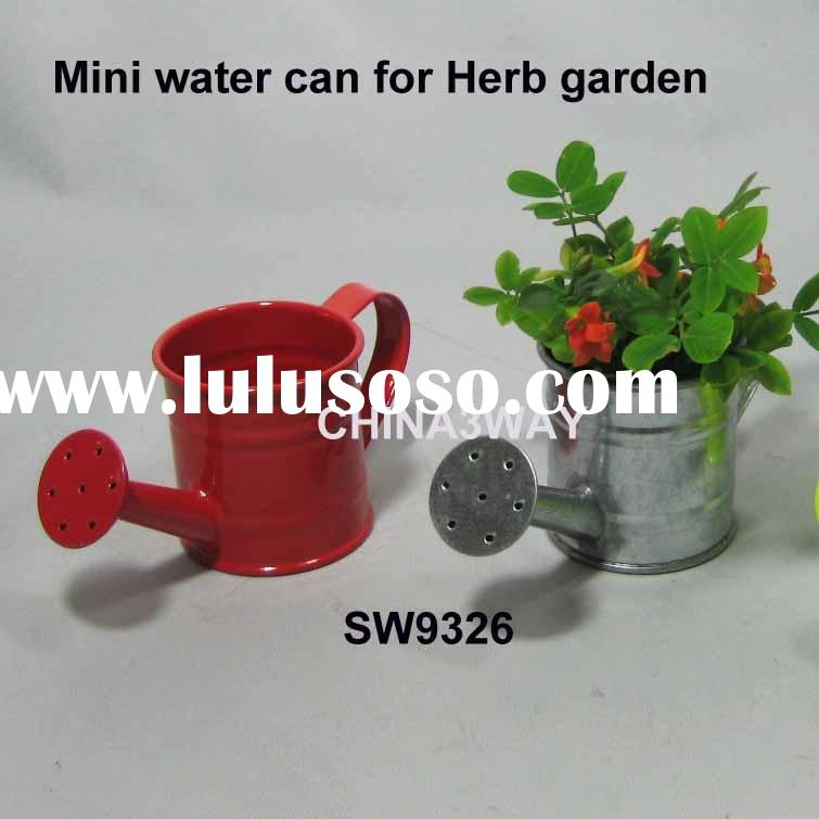 Mini watering can for herb growing or gift