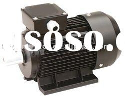 AC Squirrel Cage Induction Motor