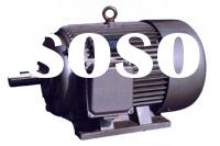 Three-Phase Squirrel-Cage Induction Motor (Y or C Series)