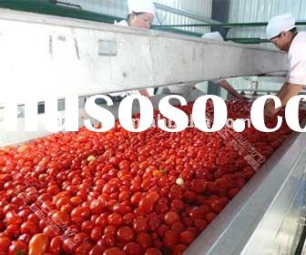 fruit processing plant