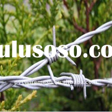 Hot-dipped Galvanized Barbed Wire (ISO9001)