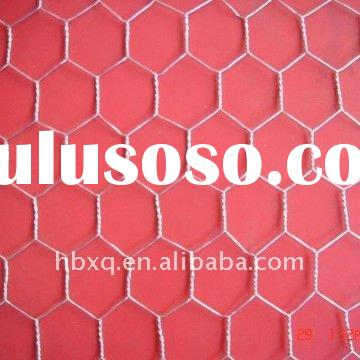 Anping Twill Weave hexagonal wire netting(Hebei Xingqiang Wire Mesh)