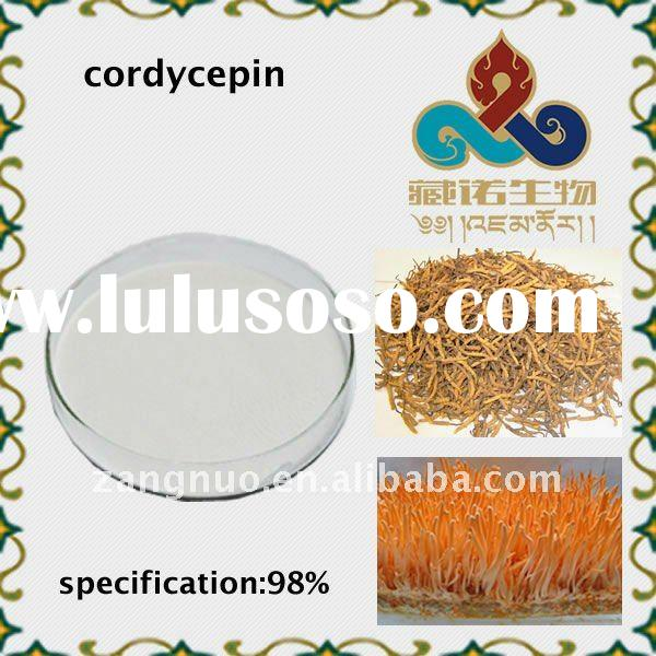 98%80%65%white powder cordycepin herbal plant extract