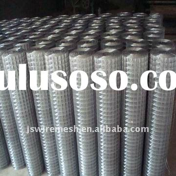 Galvanized Welded Wire Mesh(Godd Price)