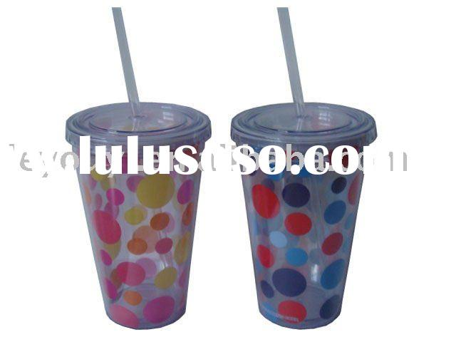 Double Wall Acrylic/Plastic Cup with Straw and Insert