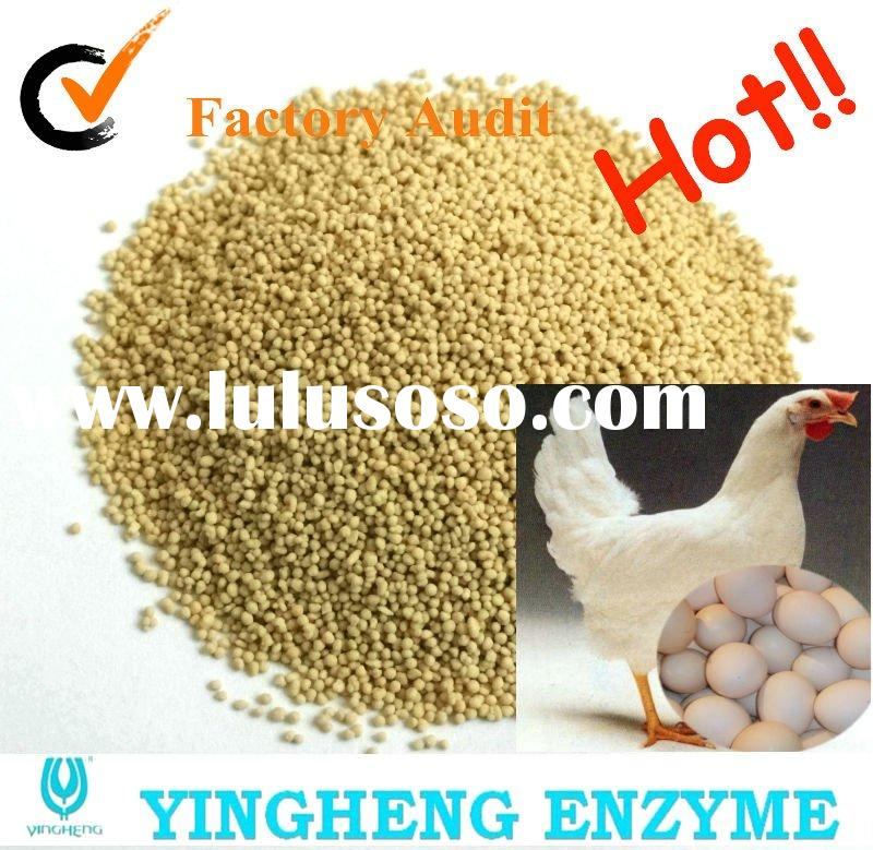 Feed additives -- Egg Layer/poultry (Protease)