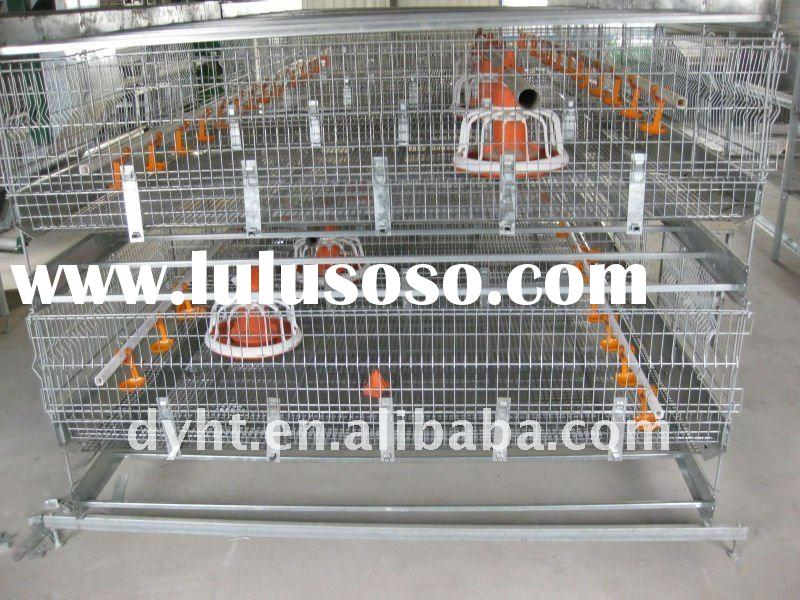 automatic poultry cage-the broiler cage feeder