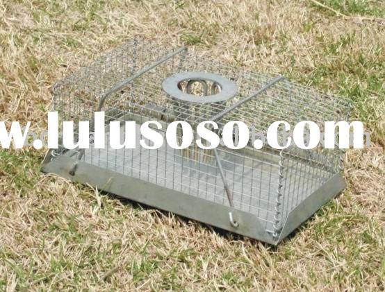 Top hole mouse cage trap
