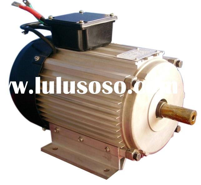 permanent magnet brushless dc motor for car and boat