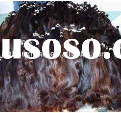 Argentina Hair Bulk Wholesale - New Arrivals - Hot Bulk Hair