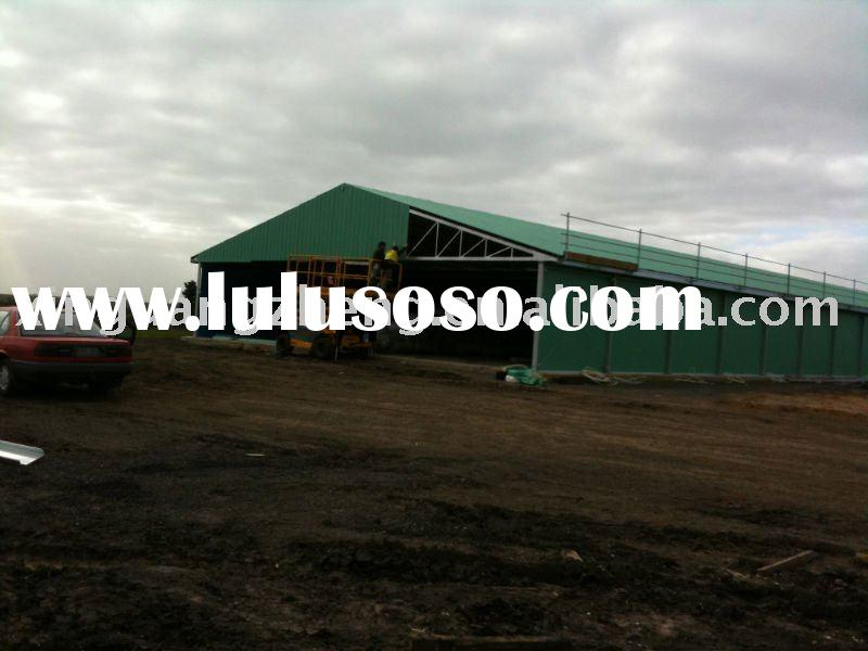 Light steel structure chicken shed (building)