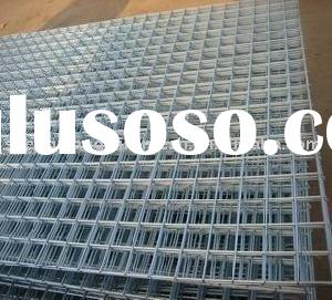 electro galvanized Welded wire mesh panel (factory)