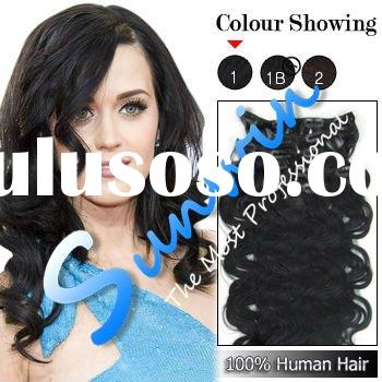 fashion Clip in Human Hair Extensions