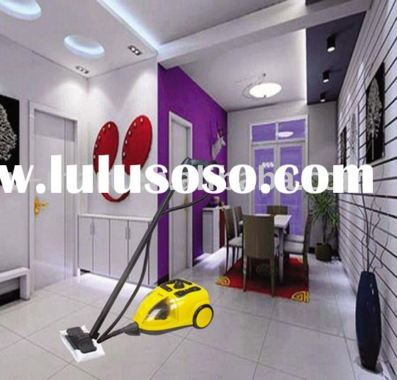 h2o steam cleaner