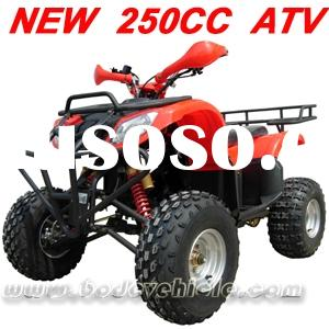 250cc Quad Off Road ATV 250cc Quad Bike(MC-352)