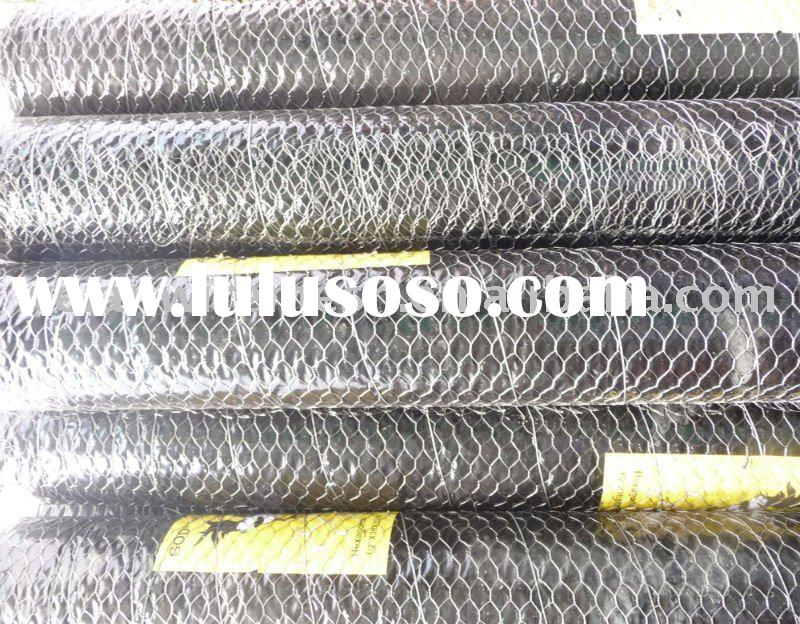 316 Stainless Steel Chicken Wire Mesh (Low Price)
