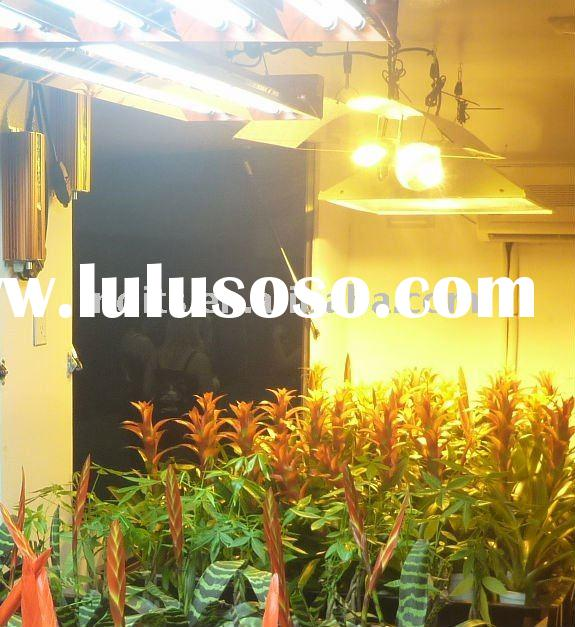 Grow Lights Hydroponics