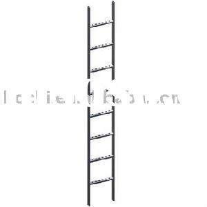(The Best One In The World)Steel Vertical Ladder