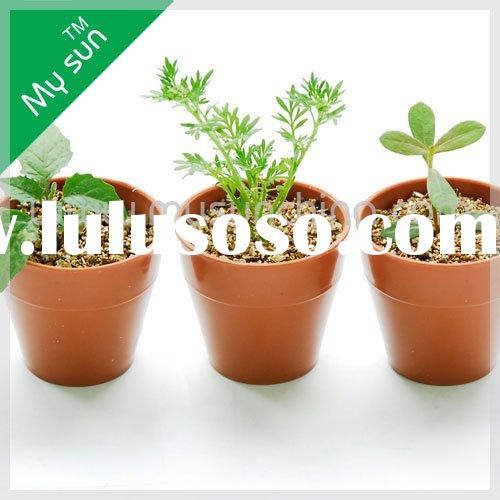 Mini flower pots,indoor pots,mini plant pots,porch flower pots