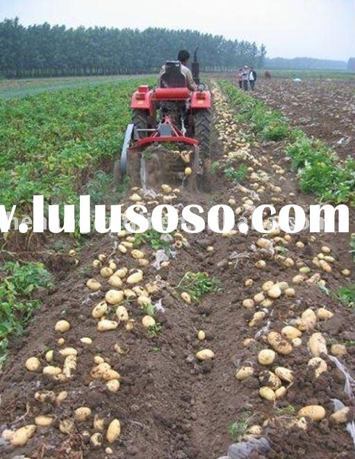 NEW double-rows mini potato carrot onion and beet harvesting machines