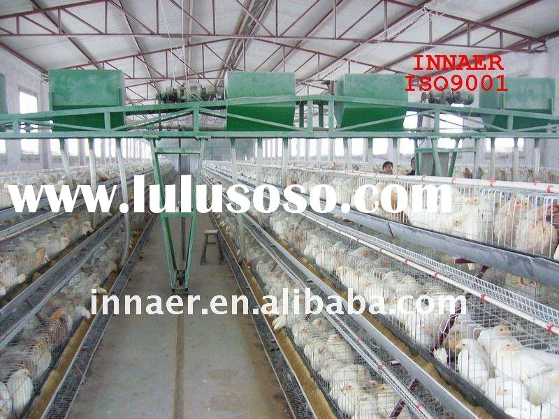egg chicken cage for poultry farm