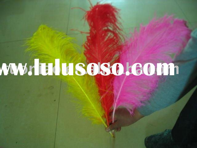ostrich feathers dress Ostrich feathers color ostrich feathers