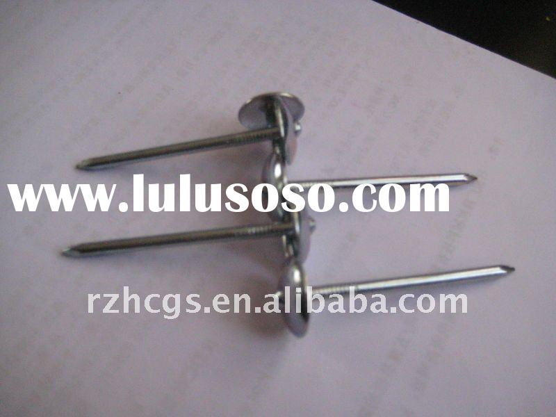umbrella head roofing nail (factory)