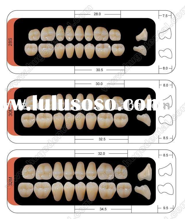 2011 hot sale A2 two-layer acrylic teeth