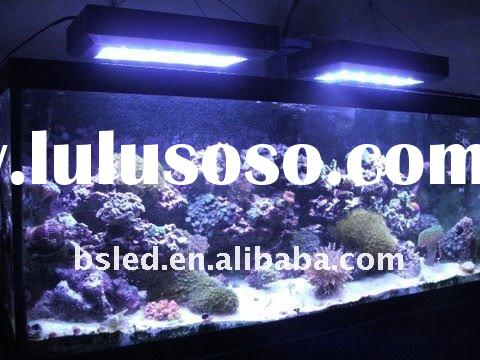 Bysen led ! 120W led aquarium light can replace Metal Halide Lamp-HQI 250W