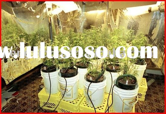 MH lamp 1000w/ MH bulb1000w/ Metal halide lamp 1000w/ plant growth lamp 1000w/ grow light 1000w/ hor
