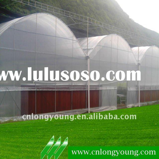 Multi-span Commercial Agricultural Greenhouse Farming