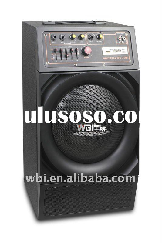 P.M.P.O 800W outdoor wireless sound system with 10'' speaker
