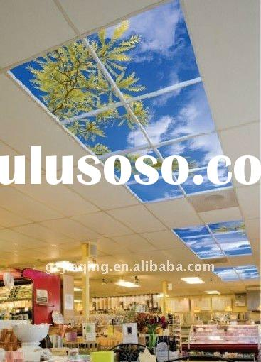 Sky ceiling lighting for department store and shopping mall