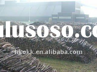 Wood Waste Recycle, Wood Bio Fuel, Saw Dust