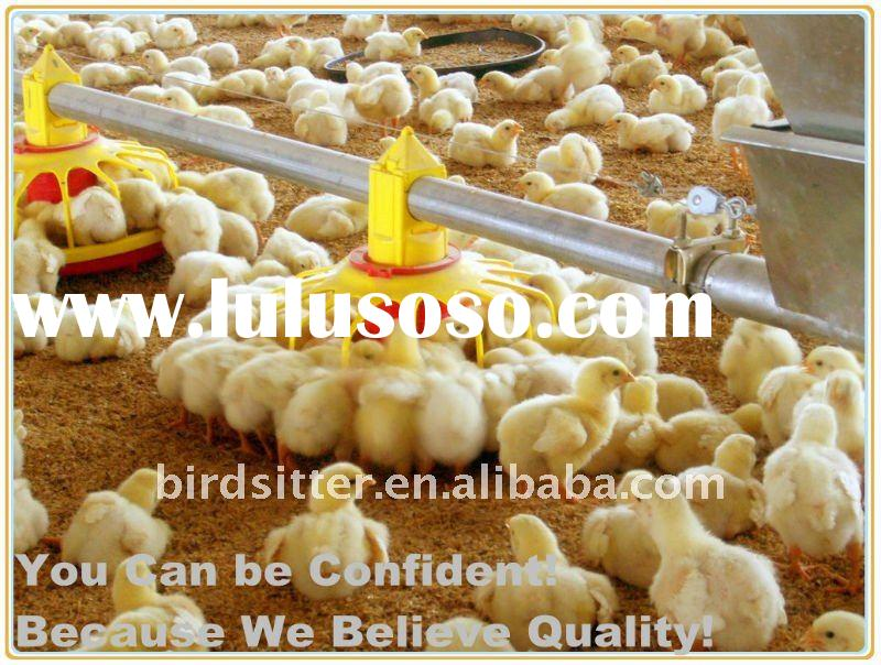 Automatic Poultry Feeder for broilers and breeders