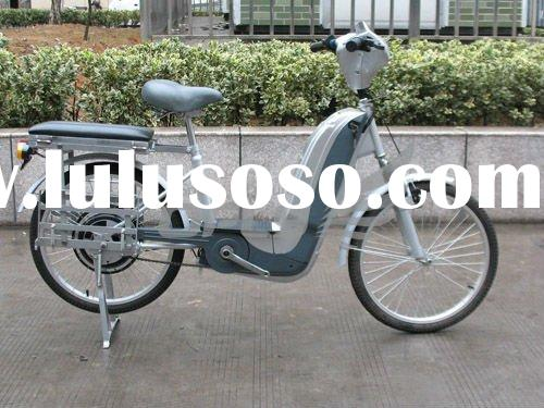 Electric Bicycle with High Torque Output 250W Motor, Suitable for cargo loading WZEB2503