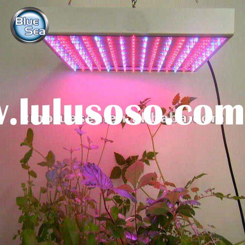 RB Color 1000w LED Grow Lights for Indoor Greenhouse